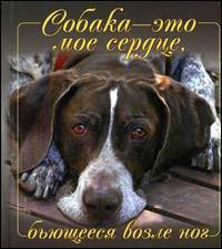 http://icdn.lenta.ru/images/0000/0079/000000797035/preview_1358461387.jpg