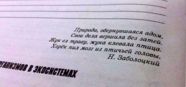 http://files2.adme.ru/files/news/part_83/836810/12309860-R3L8T8D-650-8065360-R3L8T8D-600-z.jpg