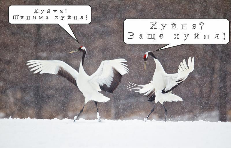 ФАНФИК СТУПАЙ ОСТОРОЖНО СКАЧАТЬ БЕСПЛАТНО
