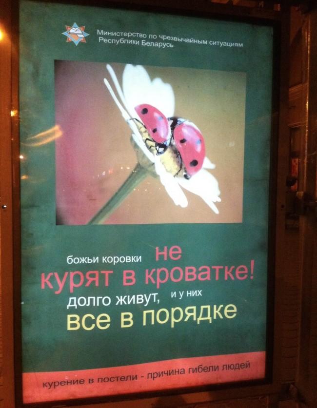 http://svalko.org/data/2015_10_13_13_44fotointeres_ru_wp_content_uploads_2015_10_2329910_R3L8T8D_650_2.jpg
