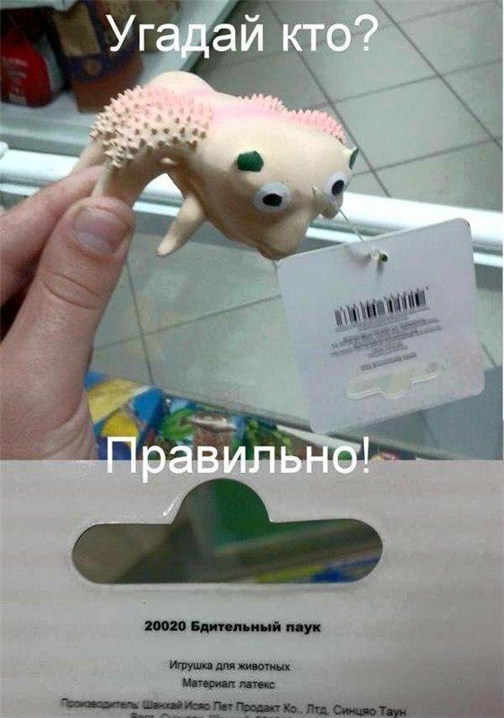 http://s38-temporary-files.radikal.ru/8b916f53e7e54fb5aafaef9d145ab766/-88693455.jpg