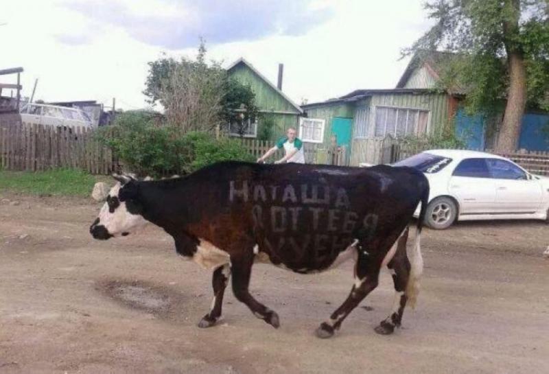 http://blog.stanis.ru/img/89255.jpg