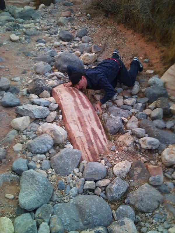 http://dailypicksandflicks.com/wp-content/uploads/2012/03/bacon-rock-bacon-stone.jpg
