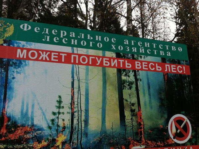 http://trinixy.ru/pics5/20160727/podborka_vecher_50.jpg