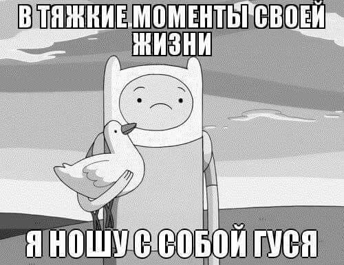 http://i12.pixs.ru/storage/0/5/6/scontentfr_2480678_23975056.jpg