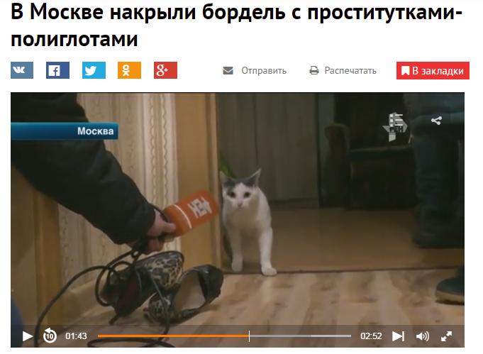 http://cs9.pikabu.ru/post_img/big/2016/11/25/6/1480067712160856349.png