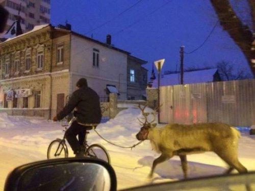 http://www.bugaga.ru/uploads/posts/2016-12/thumbs/1481726710_strannosti-6.jpg