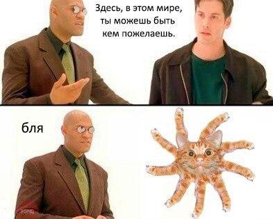 http://s00.yaplakal.com/pics/pics_original/8/6/1/9328168.jpg