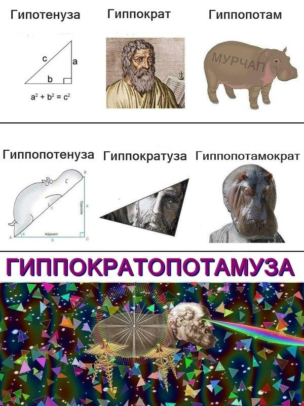 http://cs9.pikabu.ru/post_img/2017/05/03/9/149382614912638044.jpg