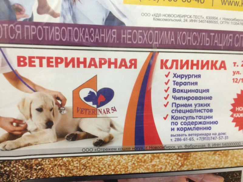 http://cs9.pikabu.ru/post_img/big/2017/05/01/3/149361071612947278.jpg