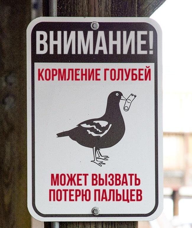 https://files3.adme.ru/files/news/part_155/1553665/2302265-3488210-1-0-1502003212-1502003221-650-1-1502003221-650-5598f3aaa0-1502180798.jpg
