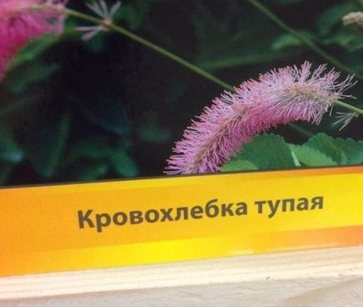http://savepic.net/10192313.jpg