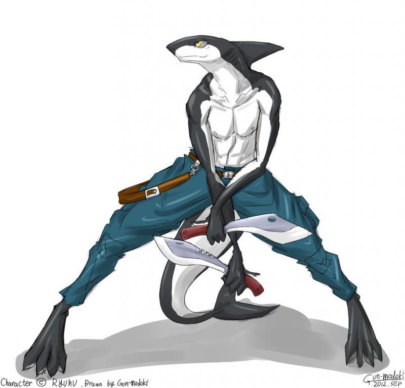 https://pre00.deviantart.net/1c5b/th/pre/f/2012/332/0/2/shark_by_gun_modoki-d5mhiau.png