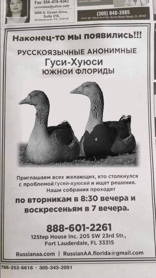 http://images.vfl.ru/ii/1542182384/5753bc22/24187758.jpg
