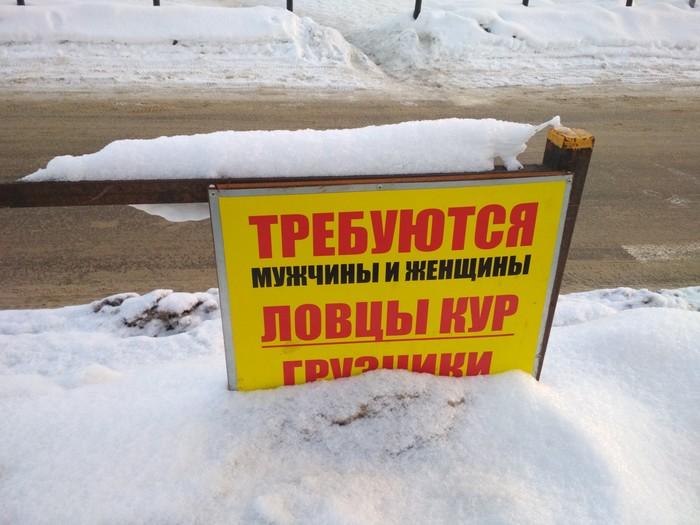 https://cs8.pikabu.ru/post_img/2019/01/07/9/1546871267138597677.jpg