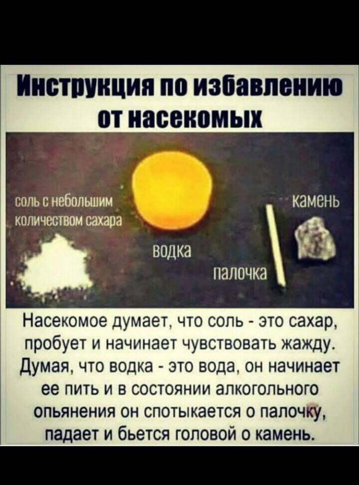 https://pp.userapi.com/c845218/v845218826/2000fd/klN4S42cPjk.jpg