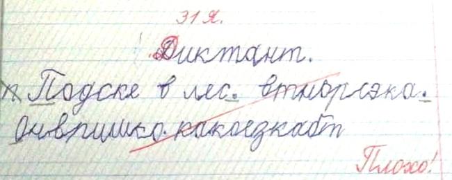 https://cs12.pikabu.ru/post_img/2020/02/06/5/1580973743113961137.jpg
