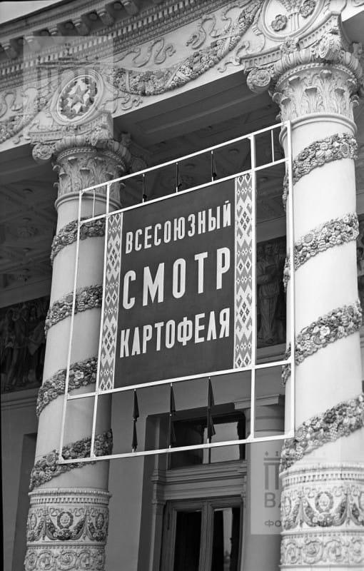 https://ltdfoto.ru/images/2020/10/20/1601334630-3c3cad1cc5fc7c7dbeebbb9573c9a006.jpg