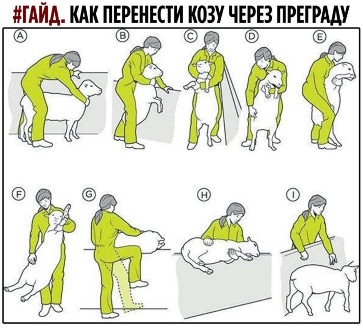 https://ltdfoto.ru/images/upload_2020-7-11_18-15-49-png.66618.png