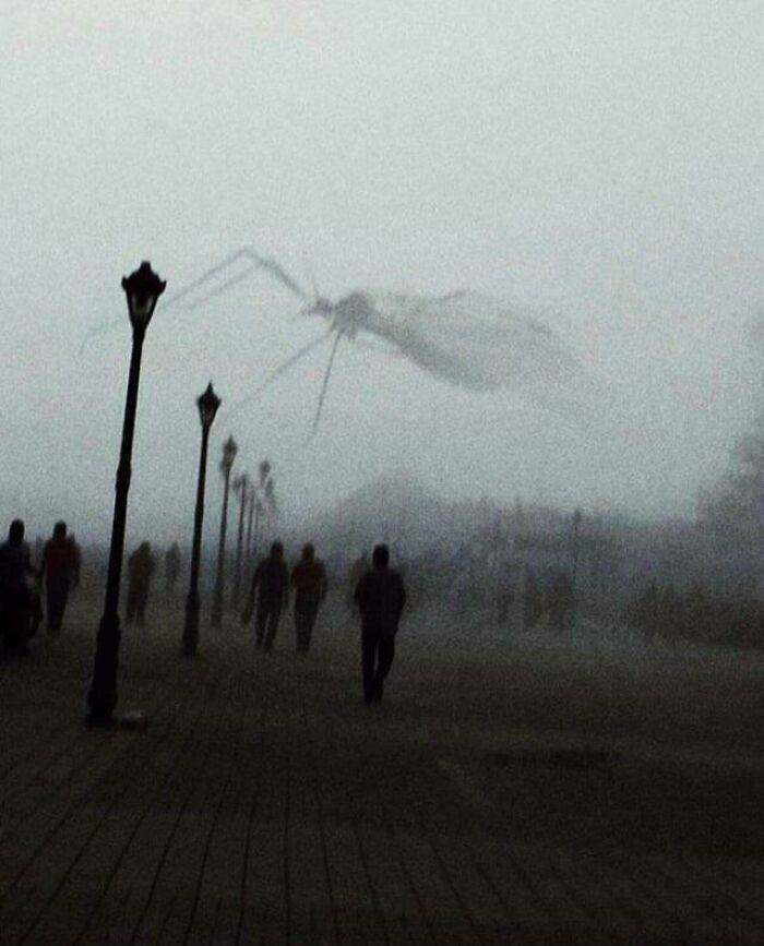 https://img.izismile.com/img/img14/20210616/640/these_photos_are_oddly_scary_640_high_04.jpg