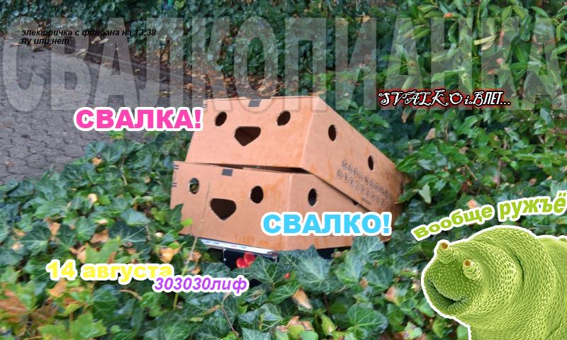 http://images.vfl.ru/ii/1627568869/99dbeaae/35324892.jpg