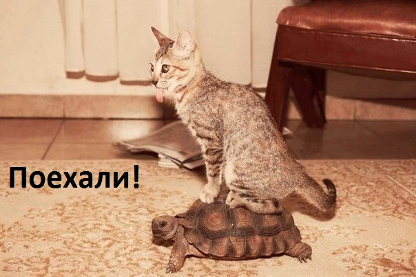 https://www.imagetext.ru/pics_max/images_8496.jpg